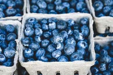 berry-pints